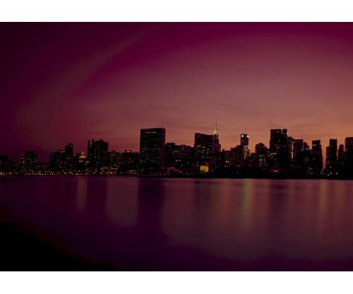 Violet New York City