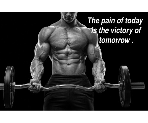 The Pain Of Today Is The Victory Of Tomorrow