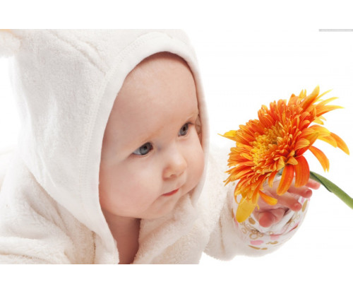 Child's Love - Cute Baby Playing With Sunflower