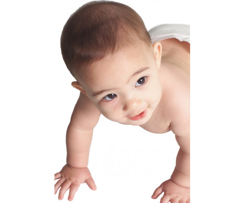Child's Love - Cute Crawling Baby 2