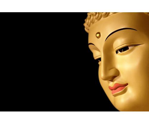 Gautama Buddha Fine Art 2