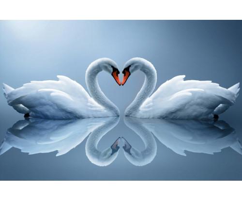 Heartly Love